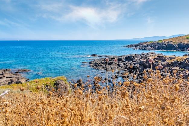 Bella vista della costa italiana in sardegna.