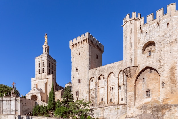Bella vista del palazzo dei papi nella città di avignone e della cattedrale di nostra signora di doms