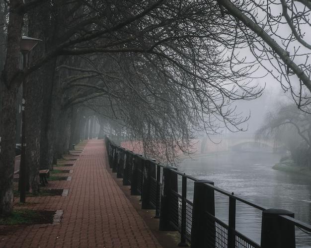 Bella vista sul fiume reno nel parco di strasburgo