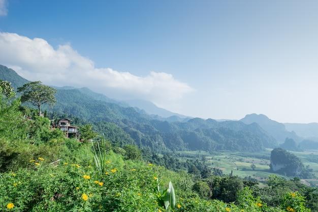 Bella vista di colline verdi tipiche, alberi, clound, cielo blu, luce del sole, bellissimi campi verdi e prati