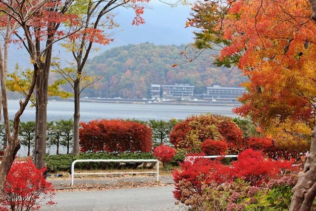 Bella vista con il lago dell'albero autunnale e il parco pubblico di montagna in giappone parco naturale e all'aperto