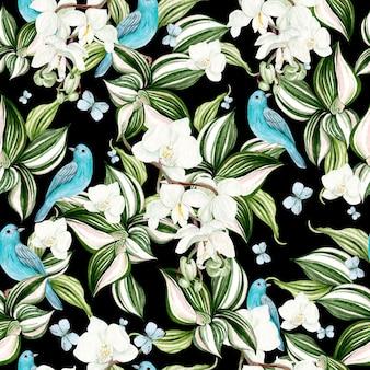 Bella carta acquerello con fiori di orchidea e cornice di uccelli blu su sfondo nero