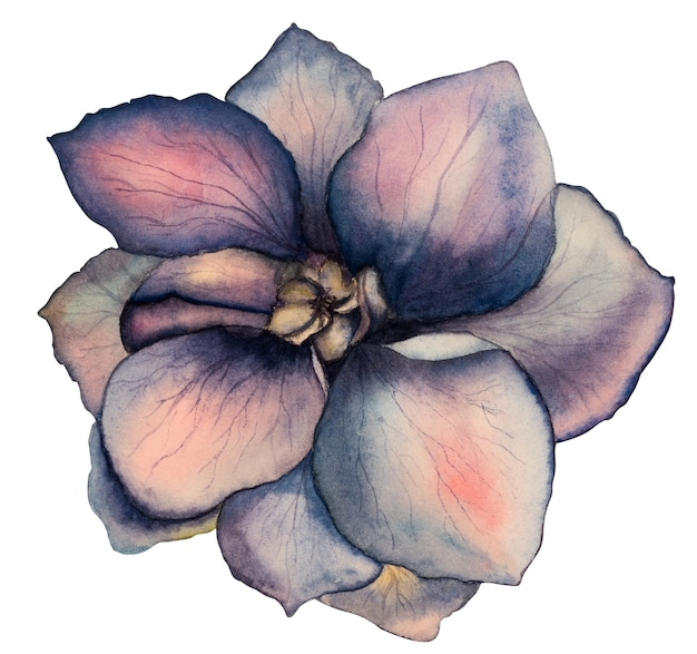 Bellissimo disegno ad acquerello di fiori luminosi. avvicinamento