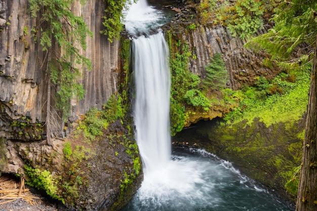 Bella cascata nella foresta verde, oregon, usa.