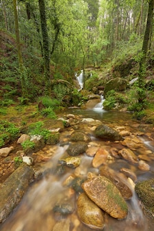 Belle cascate formate da un fiume nella zona della galizia, in spagna.