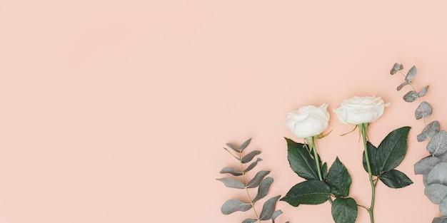 Bella rosa bianca fiore con ramo di eucalipto su sfondo rosa pastello