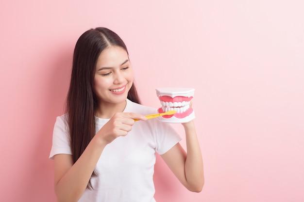 La bella donna sta tenendo il modello artificiale dei denti per la dimostrazione pulita dentale