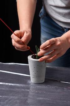 Bella donna che pianta succulente in vaso concreto. ecologia t