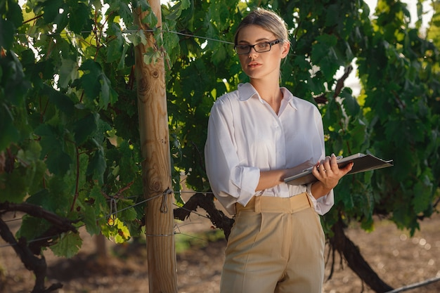 Il sommelier della bella donna controlla l'uva prima del raccolto