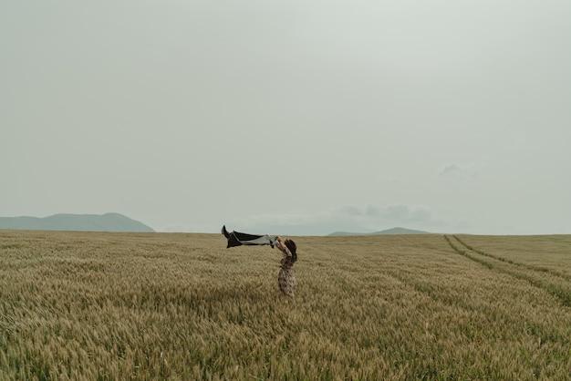 Giorno ventoso dei bei campi di frumento della donna in spagna