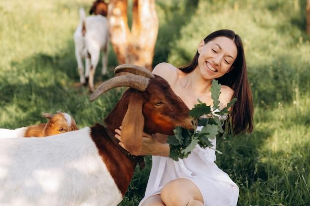 Bella donna in un abito bianco nutre capre e i loro bambini verdi in una fattoria ecologica.