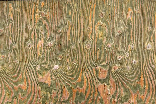 Bella struttura in legno. parete di legno con divorzi verdi. foto di alta qualità