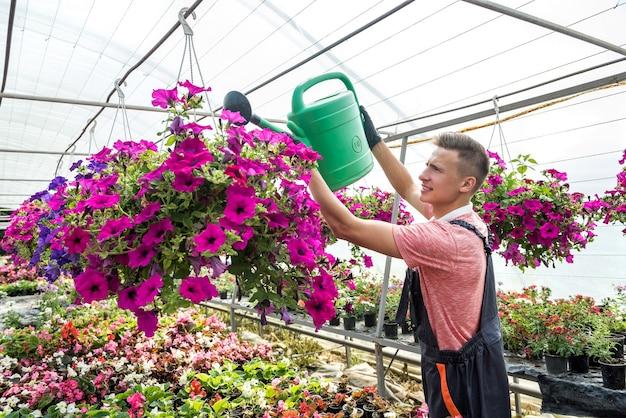 Il bel ragazzo versa fiori in fiore nella serra. botanico