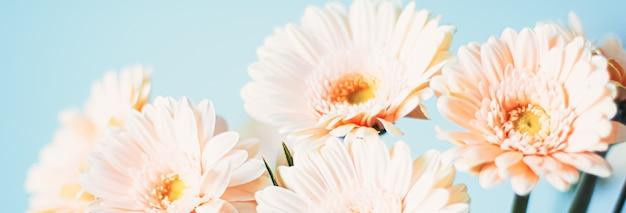 La bellezza di un fiore di margherita arte floreale e bellezza nella natura