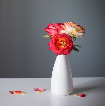 Belle rose in vaso bianco su sfondo grigio
