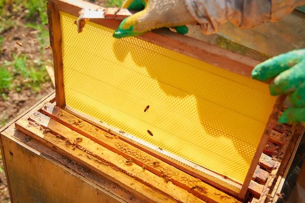 Apicoltore in costume e guanti da apicoltore serve alveari con api, imposta una nuova cornice con favi, tiene una cornice vuota con favi