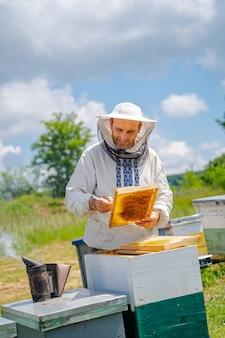L'apicoltore sta lavorando con le api e gli alveari nell'apiario.