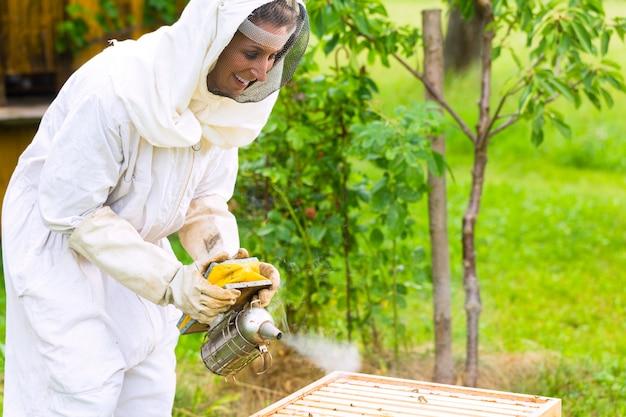 Apicoltore con fumatore che controlla beeyard e api