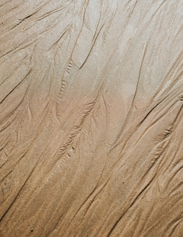 Fondo beige di struttura della spiaggia sabbiosa