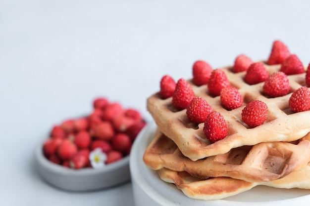 Cialde belghe o viennesi delizioso piatto dolce, snack da dessert, concetto di menu. copia spazio per il testo