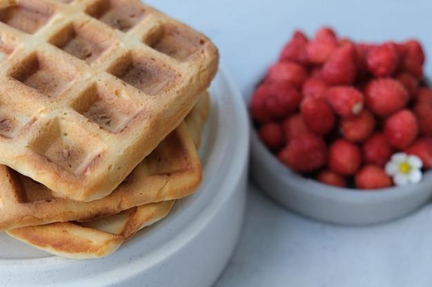 Waffle belgi o viennesi con fragole