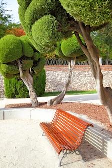 Panchina sotto il cipresso reciso nel parco del buen retiro, madrid