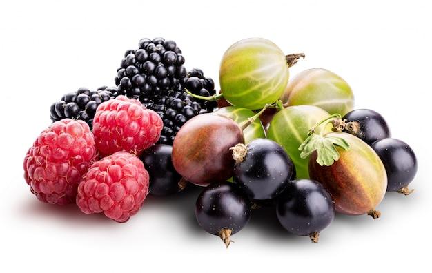 Bacche (lampone, ribes nero, mora, uva spina) isolati su sfondo bianco.