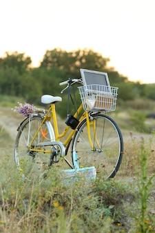 Bicicletta in prato durante il tramonto