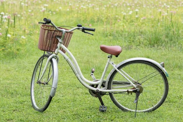 Parcheggio per biciclette nel parco contro il fiore rosa sbocciante del campo in erba in primavera. attività per il tempo libero per andare in bicicletta per vedere il giardino fiorito.