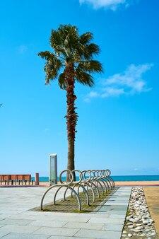 Parcheggio bici sul lungomare vicino alla spiaggia cittadina.