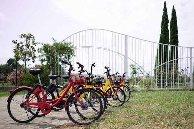 Le biciclette stanno in fila su un parcheggio in affitto