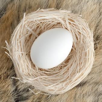 Grande uovo in piccolo nido