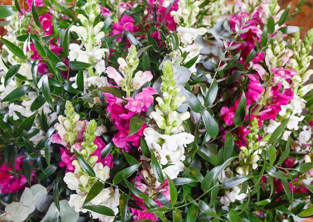Grande bouquet di fiori di lupino estivo meraviglioso multicolore