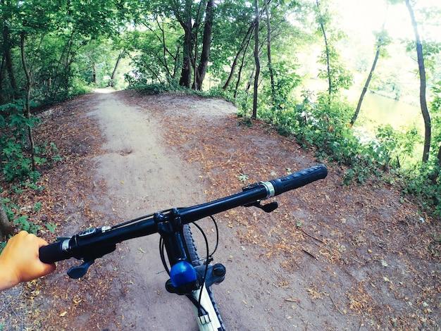 La bici si trova su una strada sterrata nella foresta