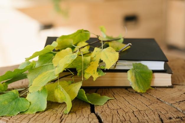 Fine settimana della casa di campagna del biologo. studio della natura. foglie di albero, libro e blocco note
