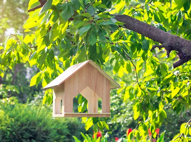Casetta per uccelli appesa all'albero. casa degli uccelli