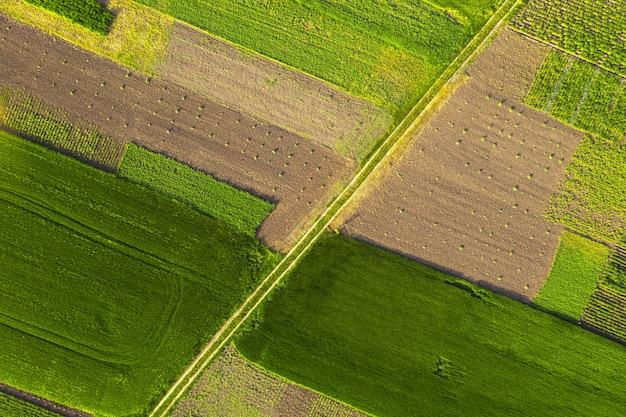 Vista dall'alto dei campi agricoli