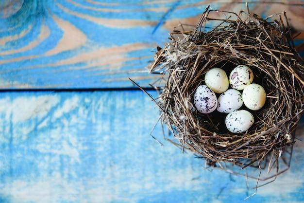 Un nido d'uccello con uova di quaglia all'interno su uno sfondo di legno blu usurato. f