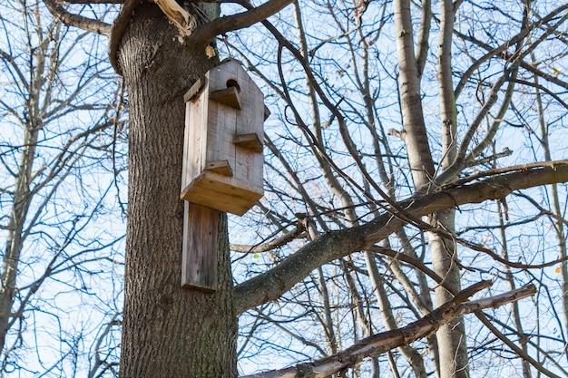 Birdhouse su un albero nel parco nella soleggiata giornata autunnale