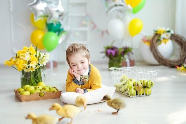 Ragazzo di compleanno che gioca con animali vivi coniglio e anatroccoli