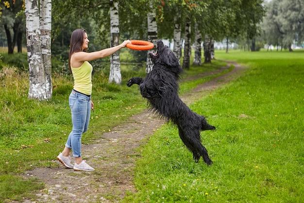 Briard nero sta giocando con il giocattolo e il suo proprietario femminile durante la deambulazione.