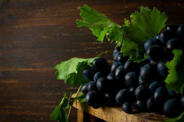 Uva nera con foglie