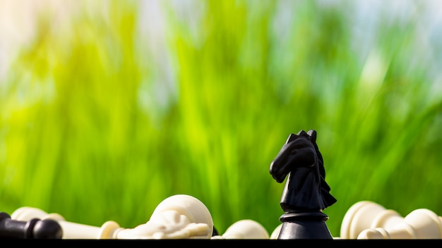 Gli scacchi del cavallo nero stanno da soli su una scacchiera