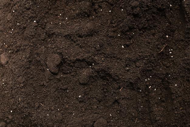 Terra nera per lo sfondo della pianta. vista dall'alto. modello di terra.