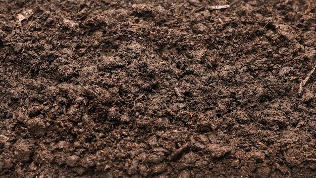 Terra nera per sfondo vegetale