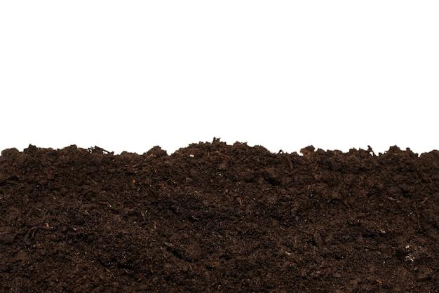 Terra nera per pianta isolata su superficie bianca.