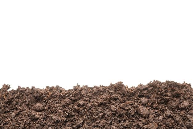 Terra nera per pianta isolata su bianco.