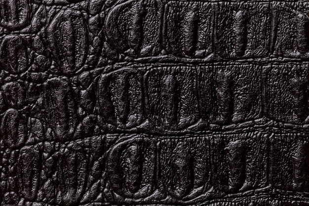 Fondo di cuoio nero di struttura, primo piano. pelle di rettile, macro.