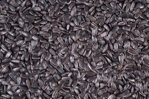 Sfondo di semi di girasole nero