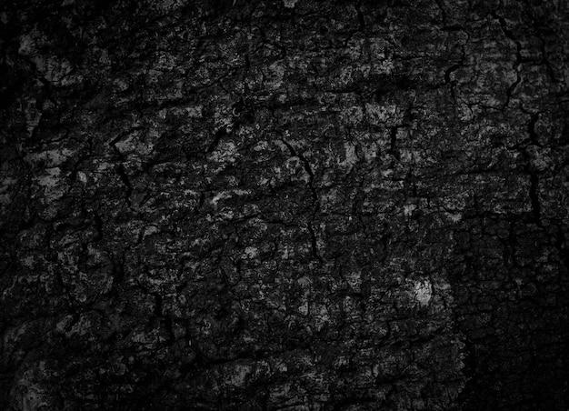 Corteccia di albero nera